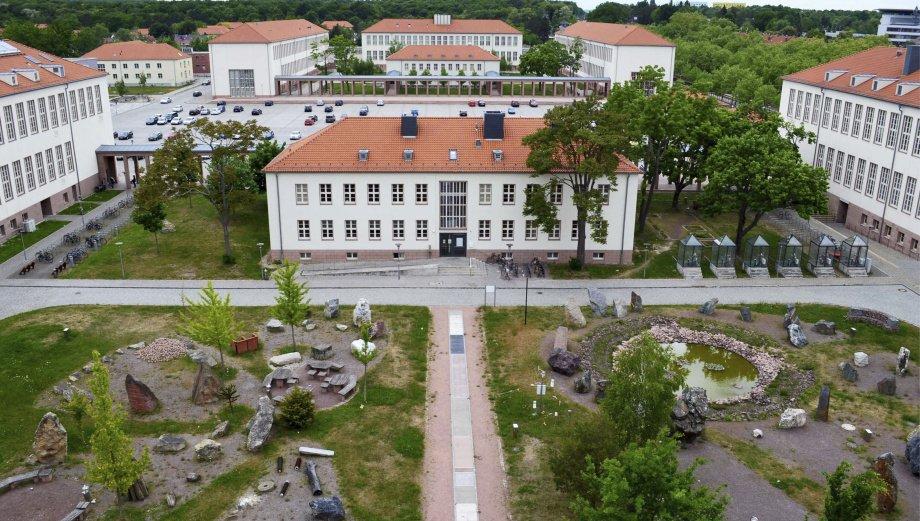 Halle University